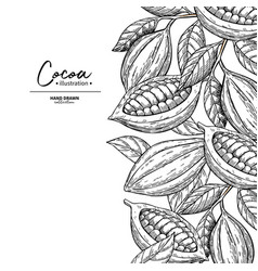 cocoa frame superfood drawing template vector image
