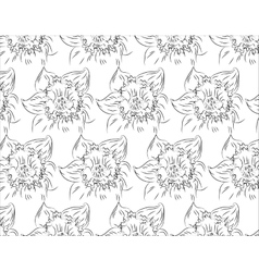 Flower Hand drawn sketch tutsan hypericum vector image