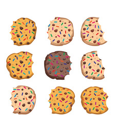 set of chocolate chip cookies vector image