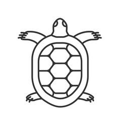 Tortoise linear icon vector