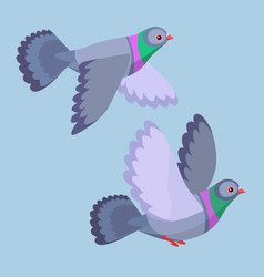 Two pigeons flying vector