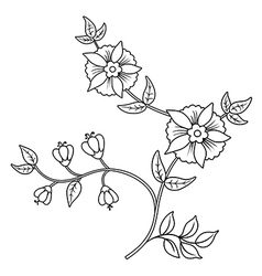 Decor floral black outline elements set vector image