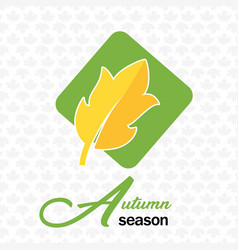 autumn season autumn leave maple background vector image