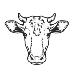Cow head icon outline drawn style vector