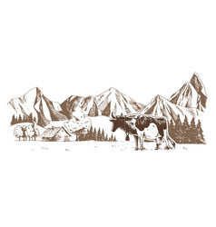 dairy farm cows graze in meadow rural vector image
