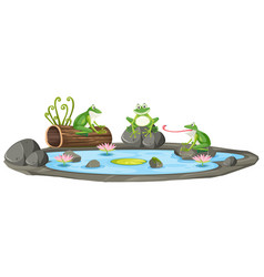 Isolated frog in the pond vector