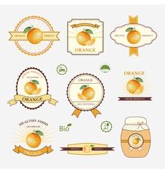 Orange set of label design and templates vector image