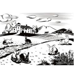 Rabbits in a meadow vector