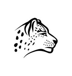 snow leopard head linear isolate vector image