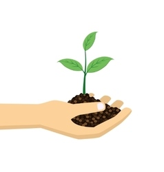 green plant in hand vector image vector image