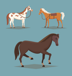 collection of isolated horses cute cartoon horse vector image vector image