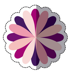 Color flower with petals icon vector