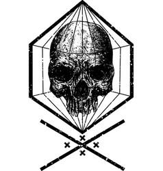 diamond protection vector image