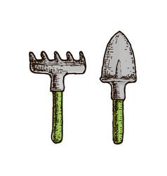 fan rake farming instrument vector image