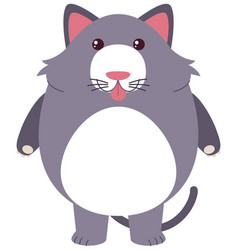 Gray cat with silly face vector
