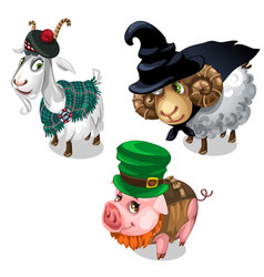 scottish wizard leprechaun costume on animals vector image
