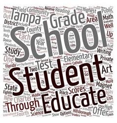 Tampa Schools text background wordcloud concept vector