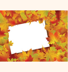 Thanksgiving fall autumn background vector