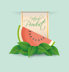 Watermelon natural product label design vector