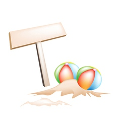 Beach Balls and Wooden Placard vector image vector image