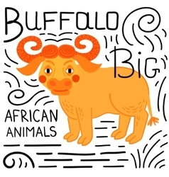 Buffalo on a white background isolated vector image vector image