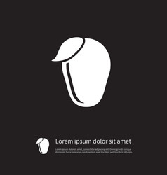 Isolated cashew icon tropical element ca vector