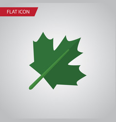 Isolated maple flat icon oaken element can vector