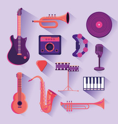 set professional instruments to music festival vector image