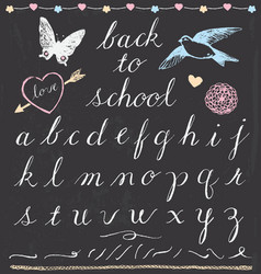 Rustic Chalk Back to School Script Lettering Set vector image vector image