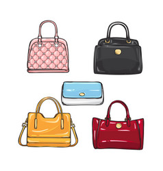 collection of different handbags for women vector image