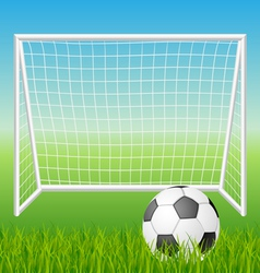 Football goal with ball vector image