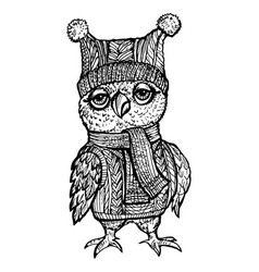 image owl in a knitted hat vector image