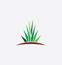 aloe plant logo icon sign element vector image