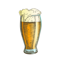 color hand drawn glass with foam bubble beer vector image