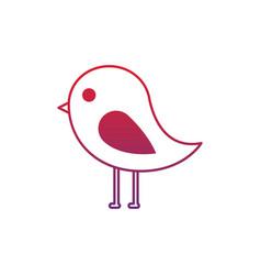 cute bird animal wild nature vector image