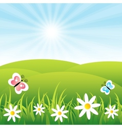Field with butterflies and flowers vector