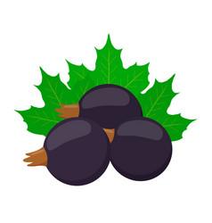 Fresh berries black currantflat vegetarian food vector