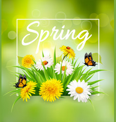 Nature spring background with colorful flowers vector