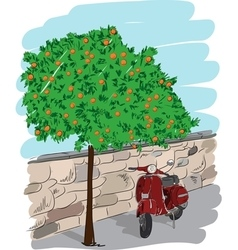Scooter near an orange tree vector image