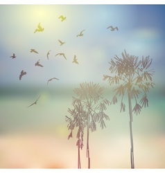 Silhouette of palm trees and birds beach sky and vector