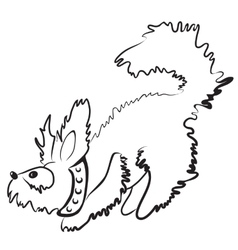Smal fluffy dog vector