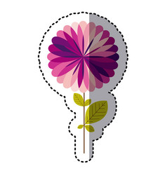 some purple flower with some petals icon vector image