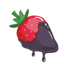 sweet strawberry in melted chocolate isolated vector image