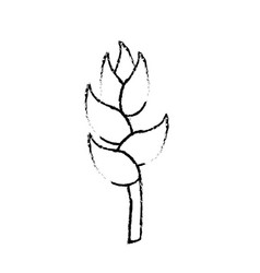 Figure beauty exotic and tropical flower branch vector