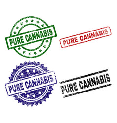 damaged textured pure cannabis seal stamps vector image