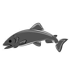 gray fish on white background vector image