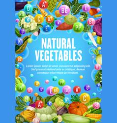 healthy vitamins in organic vegetarian vegetables vector image