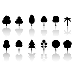 isolated tree set with reflection vector image