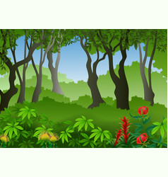 seamless with tropical forest background vector image