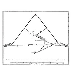 Vertical section of the great pyramid looking vector